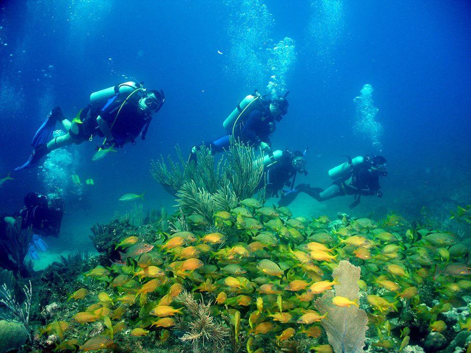 Cayo largo del Sur International Diving Center, Cuba.