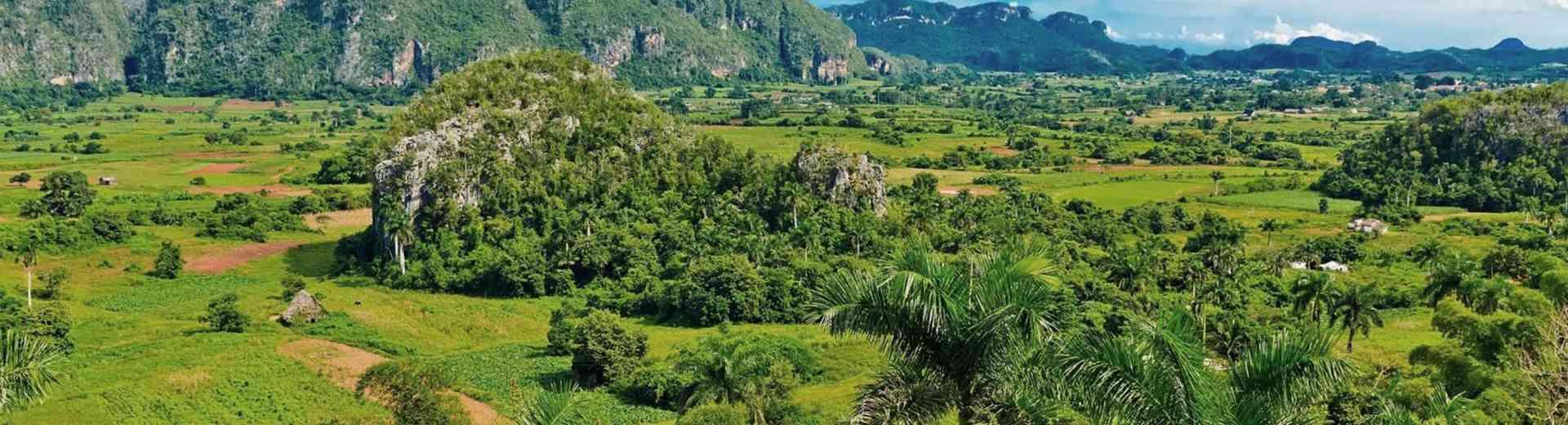Cuba réunira des amants de la lentille et de la nature